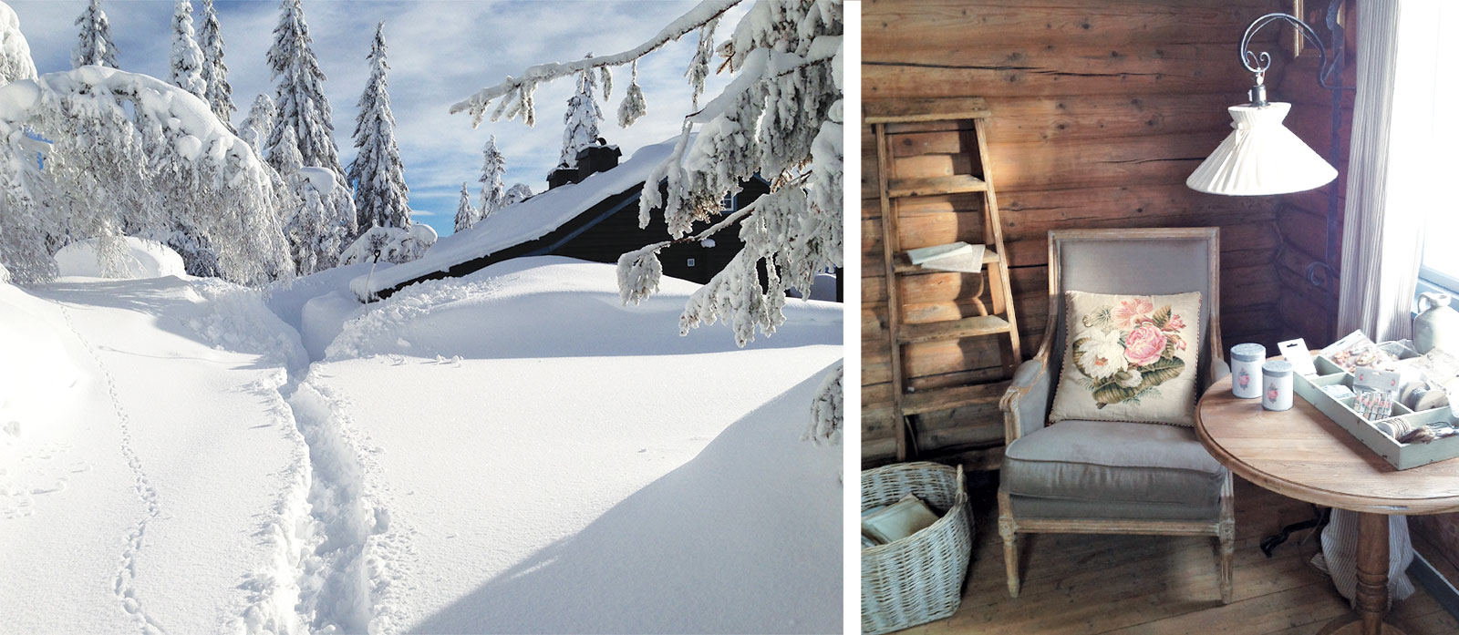 Snowy-intro